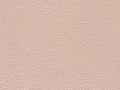uruguay-6-rosa-perlato